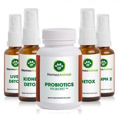 """Natural and Homeopathic remedies for pets.""""General Detoxification"""" is an all natural herbal formula to help support and assist in the general detoxification of your pet's body, liver, and kidneys.  Supporting and boosting your pet's immune system by combining these products together will greatly improve overall health. Below you will find listed the remedies that are included and the information on how each remedy detoxifies several organs of the body."""