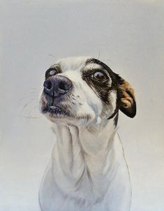 """""""Maggie"""" oil on canvas, 12"""" x 15"""", 2014"""