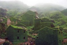 Eerie: The hilly terrain onGouqi Island - one of hundreds that make up the Shengsi Islands - make the village look even more picturesque