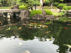Koko-en garden, Himeji - Japan Japan Trip, Japan Travel, Countries, River, Garden, Outdoor, Outdoors, Garten, Gardening
