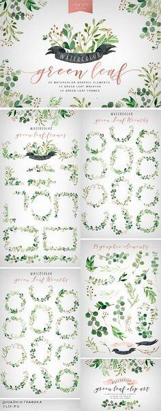 Watercolor Green Leaf Clip Art - 1319084