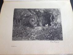 De derde litho uit De Kleine Johannes. De scene met het konijn voor zijn hol die Johannes over de ramp van de bouw van het menschenhuis vertelt. De litho verwijst naar blz. 22 & 23.