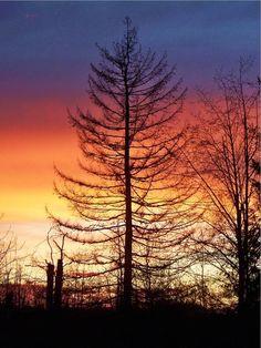 ✯ Orange and Blue Sunset