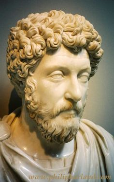 """""""The wise man sees in the misfortune of others what he should avoid."""" -Marcus Aurelius"""
