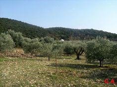 Les mées alpes de haute provence