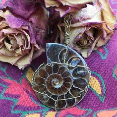 We are having a 15% OFF sale on everything with code ENERGY until December 8th which will be the last day we will be shipping orders out until December 25th since we will be on a much needed vacation. This ammonite pendant as well as many other pendants have been added to our website! Ammonites symbolize continual change and evolution. Attracts health prosperity and success. #energy #ammonite #roses #manifestation #healing #crystals #gemstones #tapestry #chakra #nature #buddha…