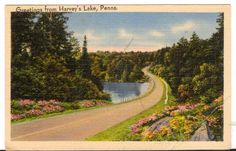 Undated Used Postcard Greetings from Harveys Lake Pennsylvania PA
