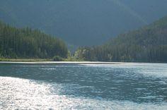 Kootenay National Park alg info