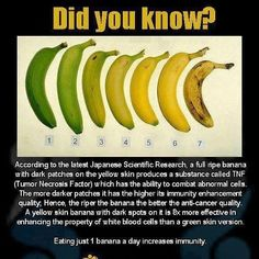 This is awesome! Ripe bananas fight cancer? Just one more reason to eat (and love) bananas daily.