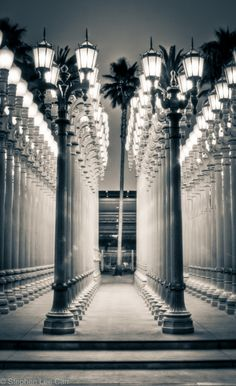LACMA in Los Angeles