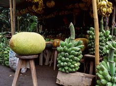 A tropical fruit stall in Camarines Sur province. Jackfruit (langka) is the large fruit on the left- the Philippines