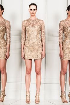 See the complete Zuhair Murad Spring 2014 Ready-to-Wear collection.