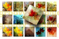 INSTANT Download Colorful Leaves and Trees 1 by groovygraphics, $2.50