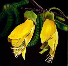 Kowhai - national flower of New Zealand New Zealand Houses, New Zealand Art, Youre On My Mind, Spring Challenge, Everything Is Connected, Nz Art, Spiritual Power, Kiwiana, Botanical Art