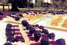 High-End Jell-O Shots.  - #PartyIdeas - Taste Of The Best Catering Idea Board @Taste Of The Best Catering Columbus, Ohio