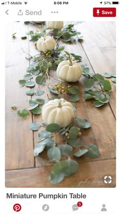 5 Minute Mini Pumpkin Table Runner (Julie Blanner) 5 Minute Mini Pumpkin Table Runner (Julie Blanner) Mandy Mingram Herbstdeko I'm so excited to share another 5 minute […] decoration for home thanksgiving Fall Home Decor, Autumn Home, Fall Mantle Decor, Thanksgiving Table Settings, Thanksgiving Table Centerpieces, Fall Table Settings, Christmas Centerpieces, Setting Table, Thanksgiving Wedding