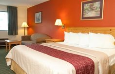 Cheap, Discount Pet Friendly Hotel In Hermitage, Pennsylvania | Red Roof Inn