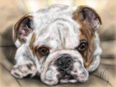 Custom Dog Pet Portrait, custom portrait, dog portrait, pet portrait, dog lover, dog art, gift, wall art, dog, artwork, pet memorial, pet by LITDigitalPaintings on Etsy
