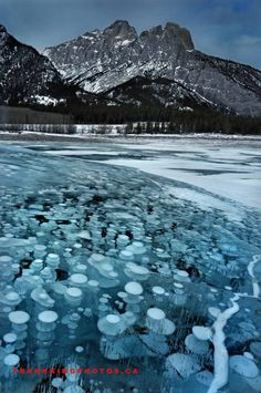 Amazing ice bubbles at Abraham Lake, Alberta: http://www.FrankKingPhotos.ca