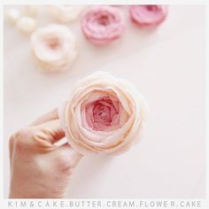 Peony is beautiful everyday #bakingclass#buttercream#cake#baking#수제케이크#weddingcake#버터크림케이크#꽃#flowers#buttercake#플라워케이크#wedding#버터크림플라워케이크#specialcake#birthdaycake#flower#장미#rose#디저트#케이크#cupcake#dessert#food#beautiful#부케#bouquet#instacake#꽃스타그램#flowercake#peony @yoon2222222