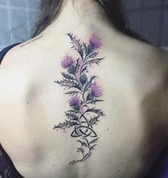 Celtic knot with Scottish thistle by June Jung