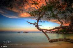 Branch by AntonRaharja via http://ift.tt/2i6xWsa
