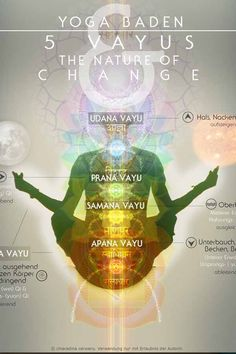 """Sometimes, simply by observing well known trails of feelings & thoughts creates enough space of awareness from which change will emerge. Stay connected and open to """"the current"""" and it´s subtle shifts in consciousness. #pranamayakosha #vayus #chiaradina #embodiment #yoga"""