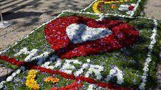 Festa da flor