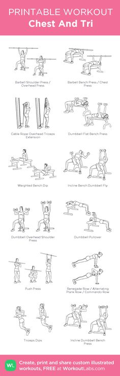 Chest And Tri: my visual workout created at WorkoutLabs.com • Click through to customize and download as a FREE PDF! #customworkout