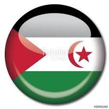Western Sahara, Flag Vector, Diagram, Chart
