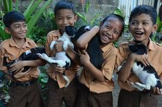 Bali school boys with a bunch of black and white puppies, as posted by #BARC on Facebook. Saving Bali street dogs.