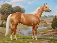 REVIEW: American Quarter Horse celebrated - The Ranger Horse Photos, Horse Pictures, Animal Pictures, Pretty Horses, Beautiful Horses, Animals Beautiful, Painted Horses, Spirit The Horse, Golden Horse