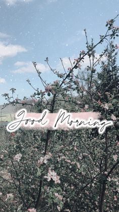 Nature Instagram, Snapchat Stories, Morning Running, Instagram Story Ideas, Insta Story, Book Photography, Good Morning, Iphone Wallpaper, Ali