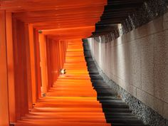 Toris @ Fushimi Inari Shrine