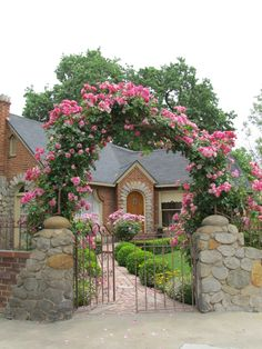 Detail of front arbor with berries and cream climbing roses.  Cindy Brown Design