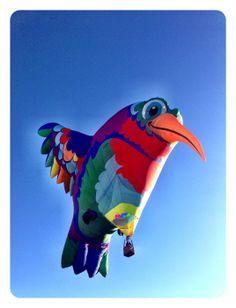 The Albuquerque International Balloon Fiesta - 2013 Cindy Petrehn Memorial Photo Contest
