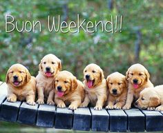 Buon Weekend :)