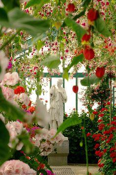 Royal Greenhouses - Laeken, #Brussels