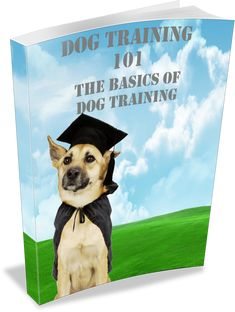 """How to Buy a Shock Dog Collar. Inside this eBook, you will discover the topics about what is a """"shock"""" no bark collar, why dogs bark, the pros and . Stop Puppy From Biting, Puppy Biting, Types Of Shock, 6 Pack Abs Workout, Dog Shock Collar, Basic Dog Training, Buy A Dog, Separation Anxiety, Dog Barking"""