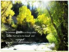 goals and life quote sid caesar 10.11.13