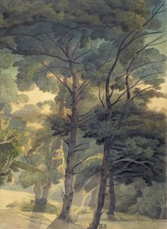 Trees in Peamore Park, near Exeter, Devon Drawing Date 1804 Francis Towne or SupportPaper (Two Joined Sheets) MediumPen And Ink (Brown); Watercolor Landscape, Landscape Art, Landscape Paintings, Watercolor Paintings, Watercolors, Landscapes, Illustration Competitions, Tree Study, Art Society