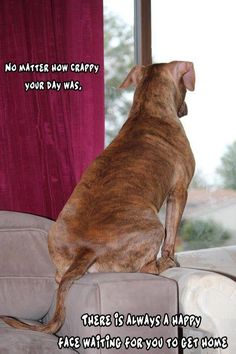 If you have a dog, that is. Or kitty!!!! <3