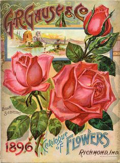Beautiful vintage seed packet cover.