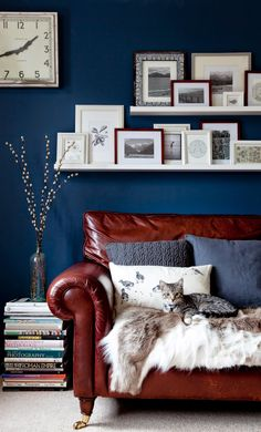 Beautiful inky blue walls in this living room with lots of picture frames on shelves. Luxurious leather sofa with soft furnishings. Rooms for you lifestyle wall. Living Room decor blue walls A Revolution For The Home : Rooms Made for You Picture Frame Shelves, Frame Shelf, Picture Ledge, White Picture, Blue Rooms, New Living Room, City Living, Living Room Decor Blue Walls, Blue Living Room Walls