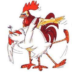 rooster hen chicken - Pesquisa Google