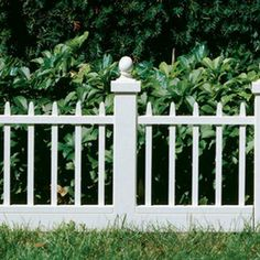 Garden Fencing On Pinterest Garden Fences Home Depot