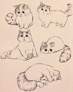 Draw Cats - My list of beautiful animals Cute Animal Drawings, Animal Sketches, Art Drawings Sketches, Cartoon Drawings, Cartoon Art, Cool Drawings, Hipster Drawings, Drawing Animals, Pencil Drawings