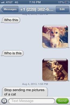 Damn Funny Texts » Page 8 of 352 » Funny text conversations with your friends and family.