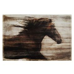 """The Race from Z Gallerie - """"this work of art is a must-have for those who love equine animals and those who need a daily reminder to trust in one's own self."""""""