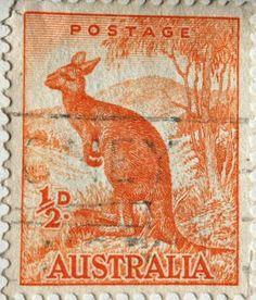 Australian Stamp - kangaroo